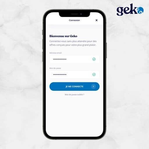 Se connecter sur Geko