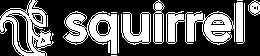 Agence digitale Squirrel